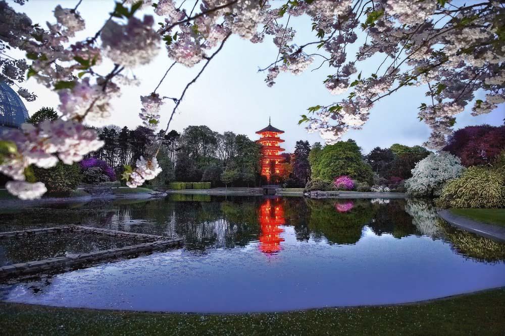 la tour japonaise
